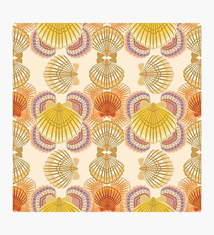 Awesome seashells Photographic Print