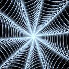 Walkin' Into Spiderwebs by Vanessa Barklay