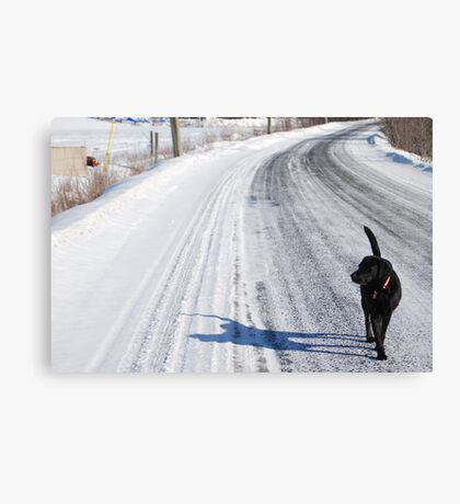 Walk along my shadow Canvas Print