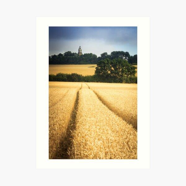 A path through the wheat Art Print