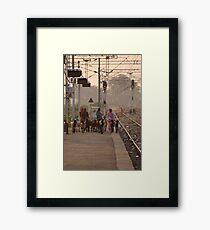 Goat herders, Bharatpur Railway Station, Rajasthan Framed Print