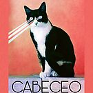 Cabeceo with Laser Cat Eyes by infinitetango