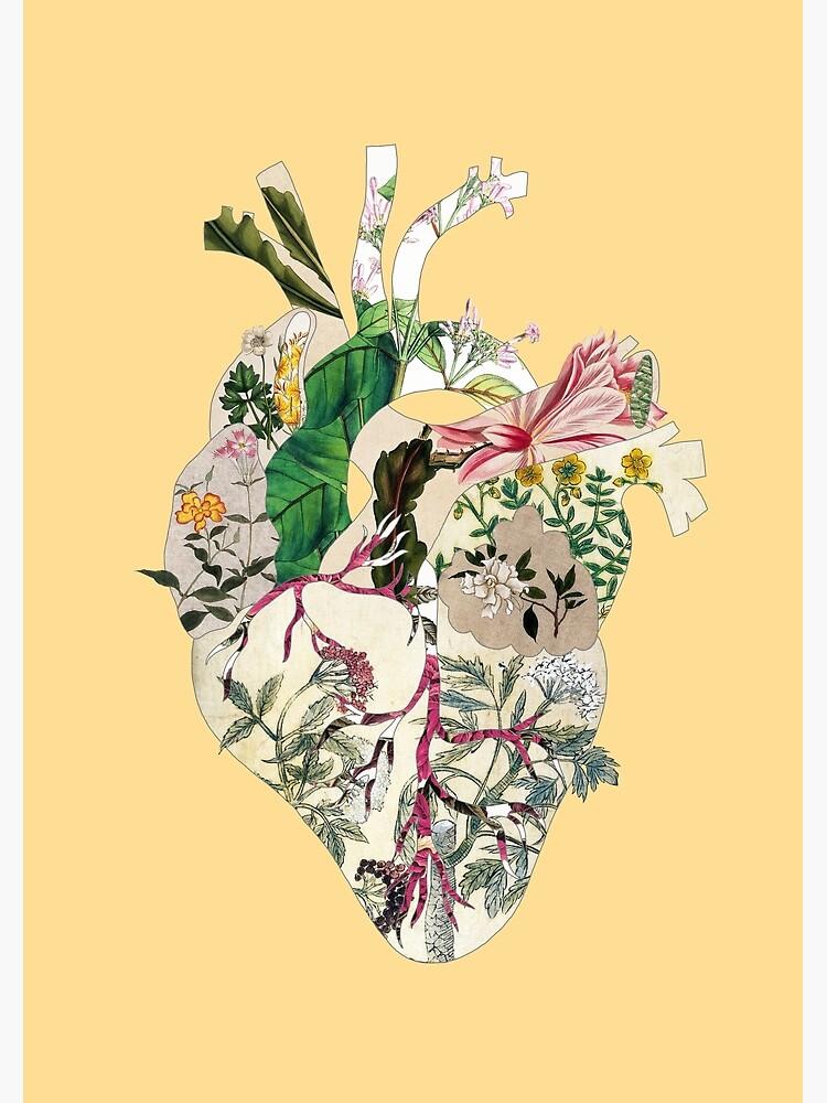 Weinlese-botanisches Herz - Sonnenschein von BiancaGreen