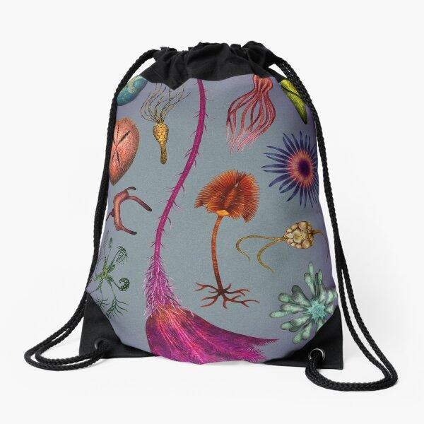 Echinoderms Plate Drawstring Bag