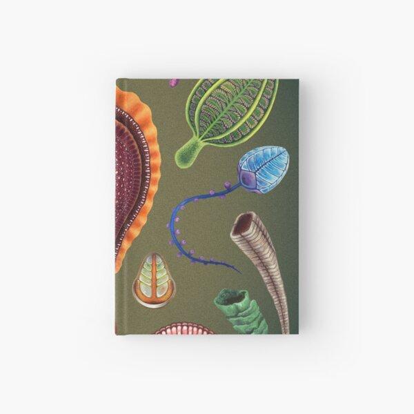 Ediacaran Plate Hardcover Journal