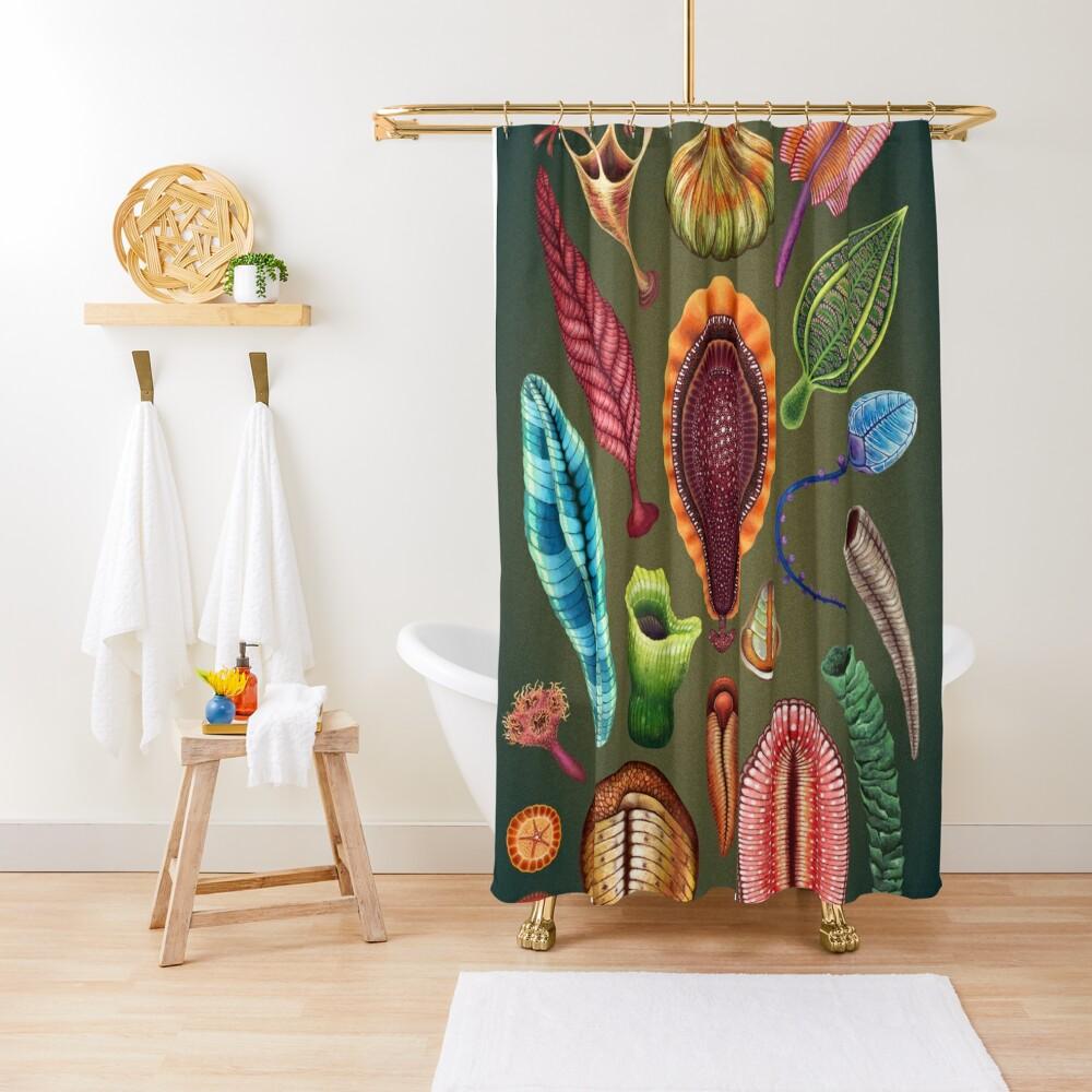Ediacaran Plate Shower Curtain