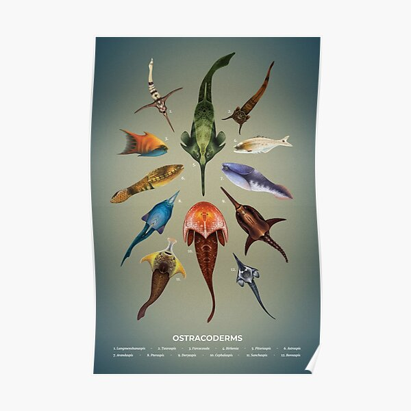 Ostracoderms Plate Poster