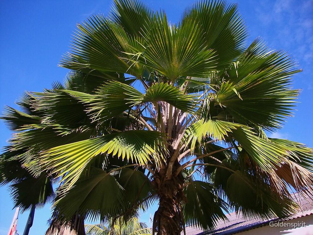 In My Palm by Goldenspirit