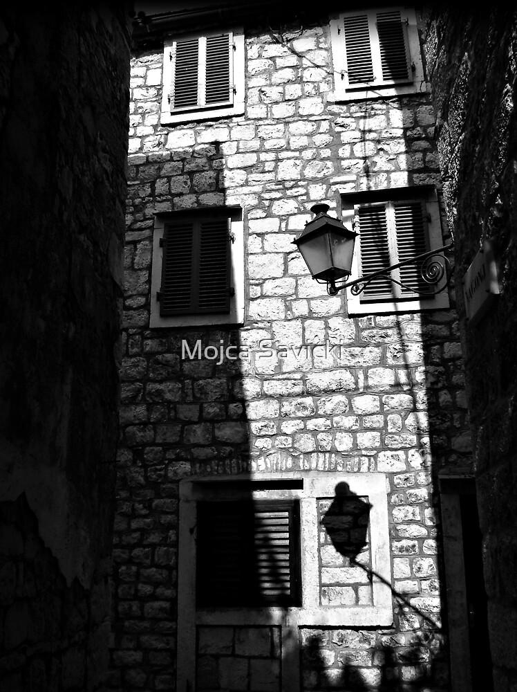 In The Shadows by Mojca Savicki