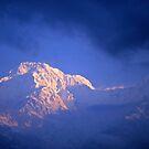 Sunrise on Annapurna from Landruk by Alex Cassels