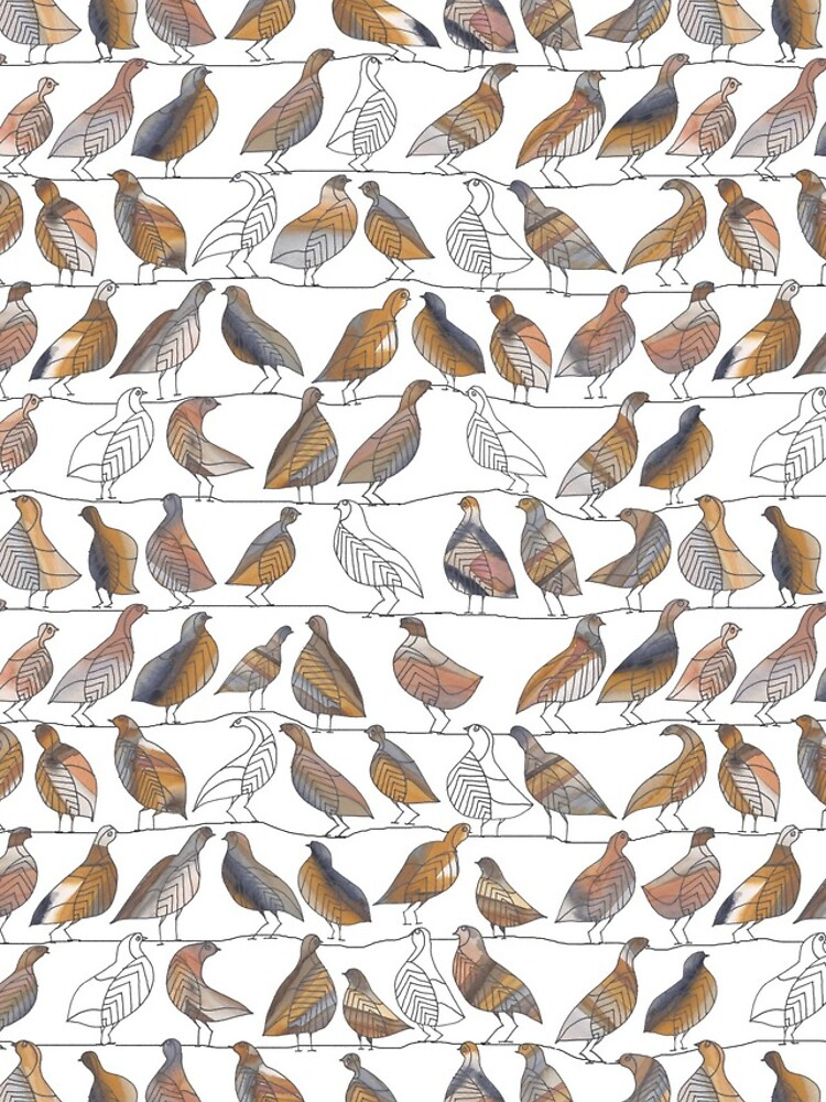 Doves on Wires Watercolor Pattern by shoshannahscrib
