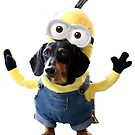 Minion Sausage Dog (Dachshund) by Jason Arnold