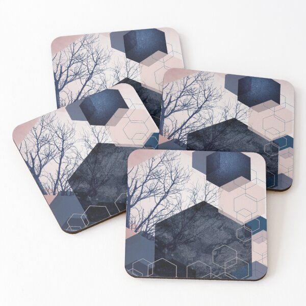 Hexagon Landscape Coasters (Set of 4)
