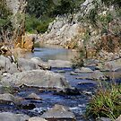 Freestone Creek & The Blue Pool by Adam Cole