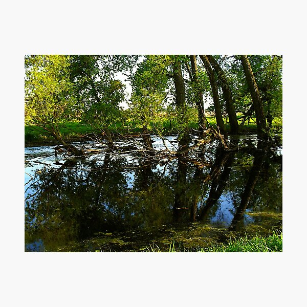 Water Color Reflections ! Photographic Print