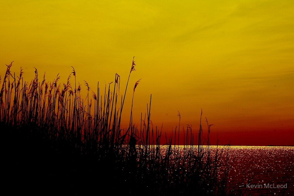 Sparkling Horizon by Kevin McLeod