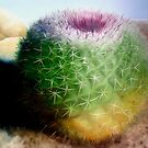 """""""Spike"""" - oil painting of a cactus by James  Knowles"""