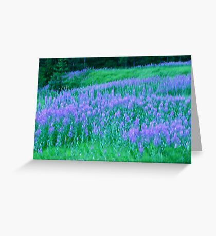 Monet....Unleashed and Wild ! Greeting Card