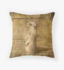 Sly Look Throw Pillow