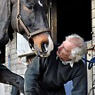 Farrier and horse dialogue by Darren Bailey LRPS