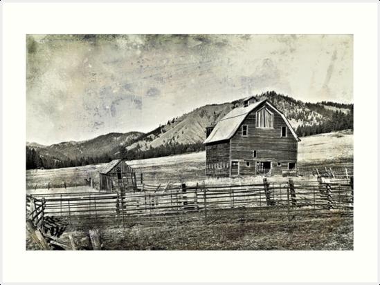 Ellensburg Barns by Robin  Koster