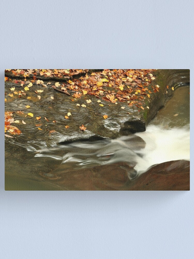 Alternate view of The Beauty of Water ~ Glassy Flow Canvas Print