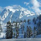 Shuksan Panorama by Appel