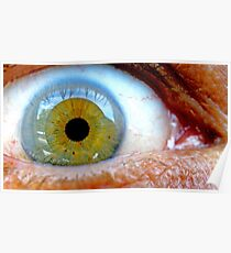 Macro Eye  Poster