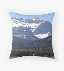 Ultimate Privacy Throw Pillow