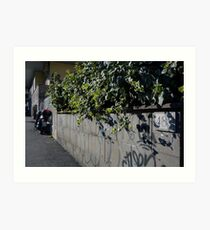 Streetview Art Print