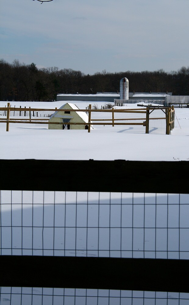 farm through fence by naturalgifts
