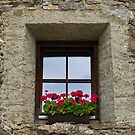 Church Window. by Lee d'Entremont