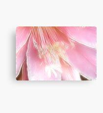 Pretty in pink (Fractalius) Canvas Print