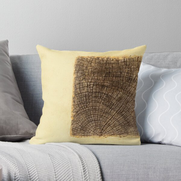 rêve de maison Throw Pillow