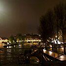 Paris Panorama by mejmankani