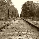 Down The Rails by Sharon Woerner