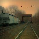 Train Crossing by Mary Ann Reilly