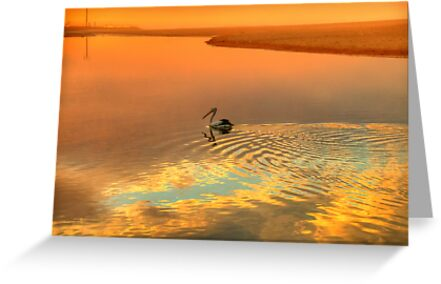 Wake - Narrabeen Lakes Entrance, Sydney Australia - The HDR Experience by Philip Johnson