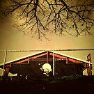 Buckman Hoops by KeriFriedman