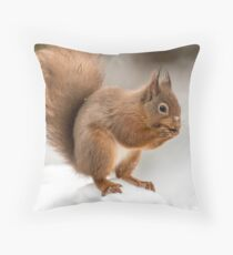 Red squirrel in the snow at Christmas  Throw Pillow