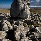 Erratic by Andrew Leighton