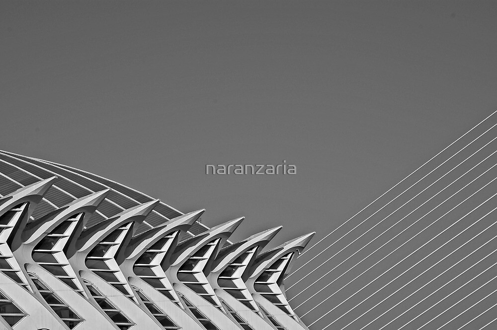 Shapes and patterns. by naranzaria