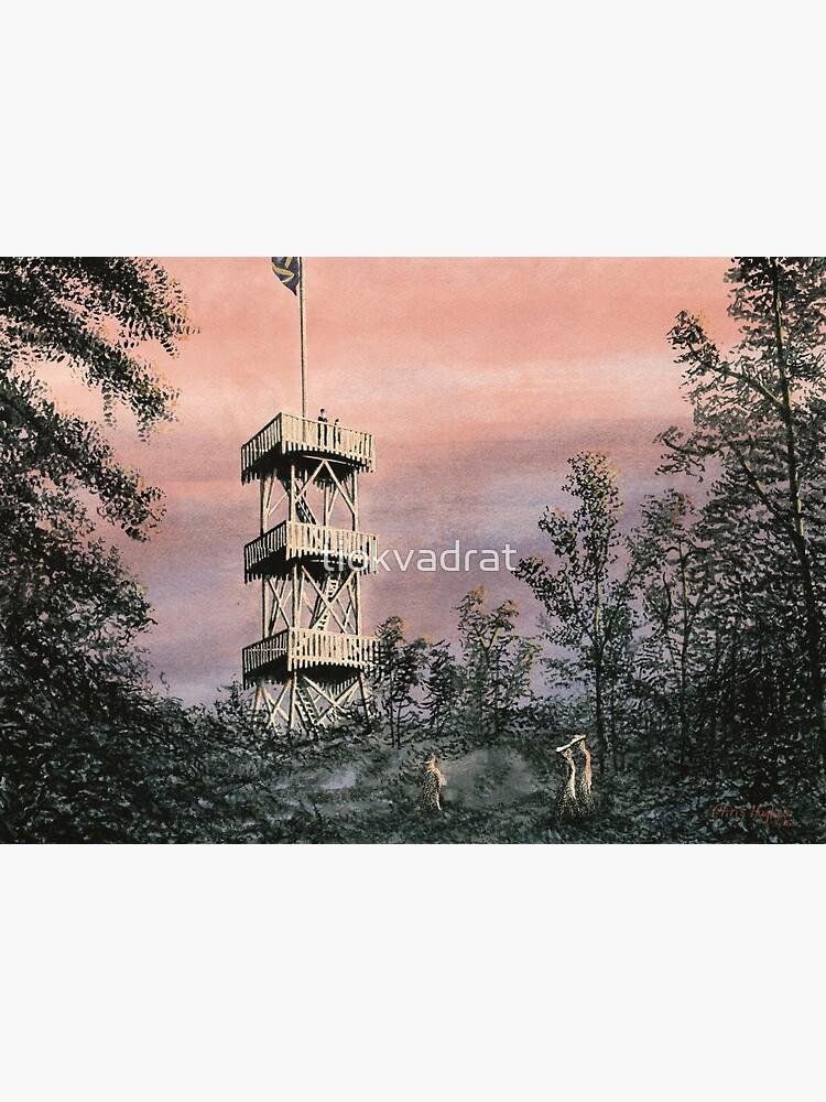 Duvbo Watchtower, Sundbyberg, Sweden, circa 1904 by tiokvadrat