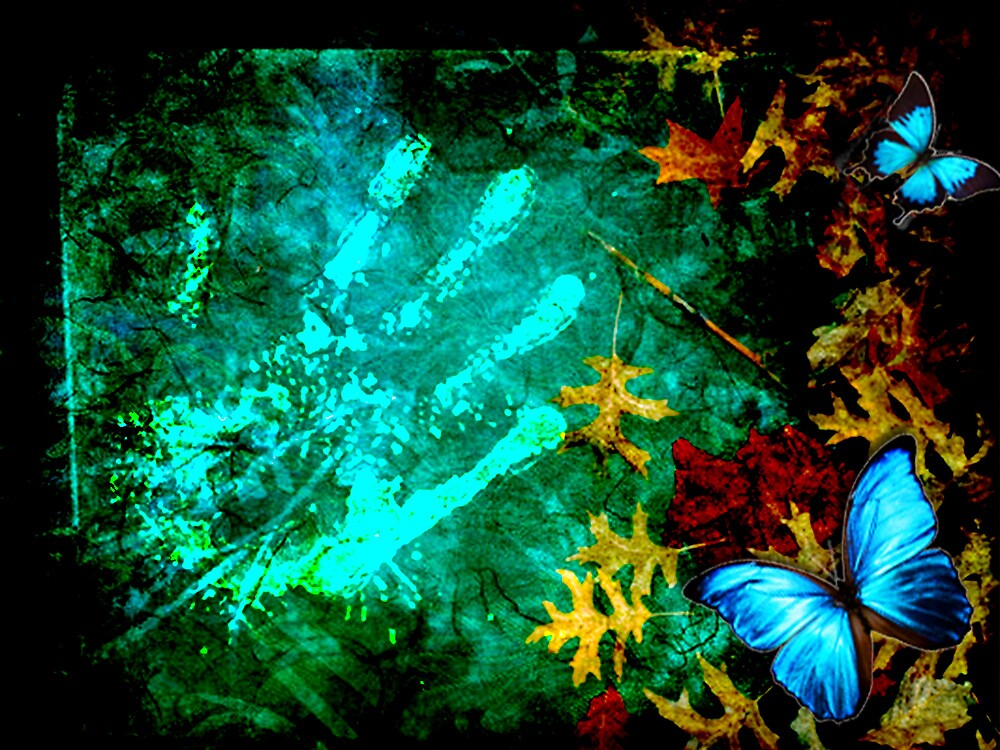 BUTTERFLY EFFECT by Tammera