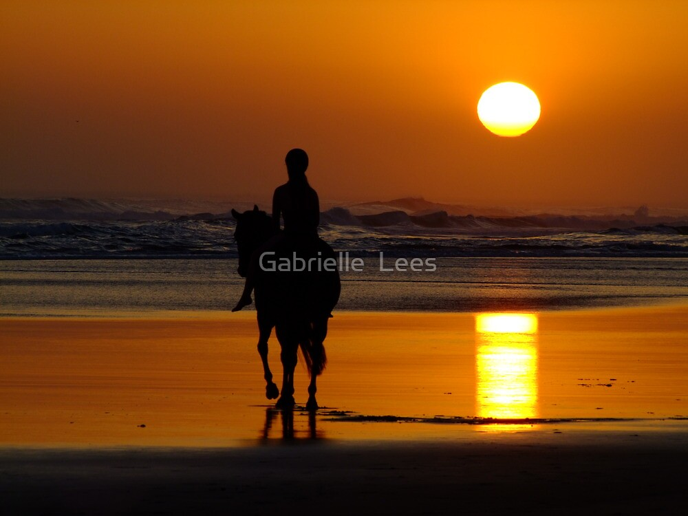 Ride Off Into The Sunset! by Gabrielle  Lees