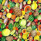 Colorful watercolor tropical fruits by Magdalena Żołnierowicz