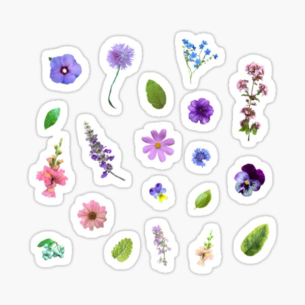 Wildflowers sticker pack  Sticker