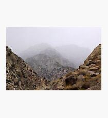 San Jacinto Brown Brush Photographic Print
