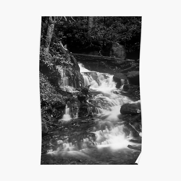 Falls in Black and White Poster