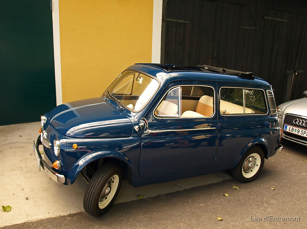 Steyr Puch 500 S by Lee d'Entremont